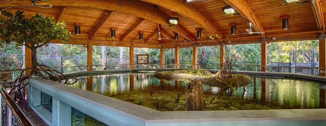 Home Gumbo Limbo Nature Center