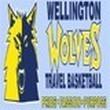 USSSA Basketball- Wellington March Madness